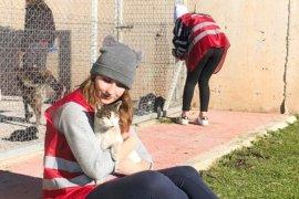 Geçici Hayvan Bakımevi Kampüs Patileri topluluğunu ağırladı