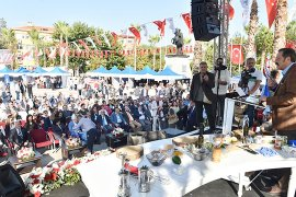 """Zeytin Hasat Şenliği'nde, """"Ortak Akıl"""" Yara Aldı.."""