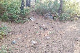 Cennet ormanlar çöp ve molozla kirleniyor