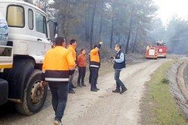 Orman yangınları Muğla'da yaz-kış dinlemiyor!.. SON HAFTADA 6 ORMAN YANGINI..