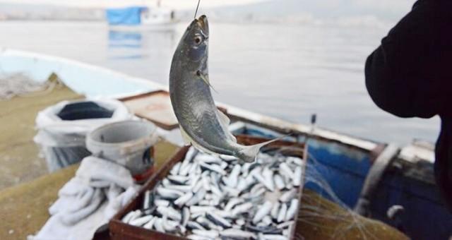 Denizlerde av yasağı sona eriyor…