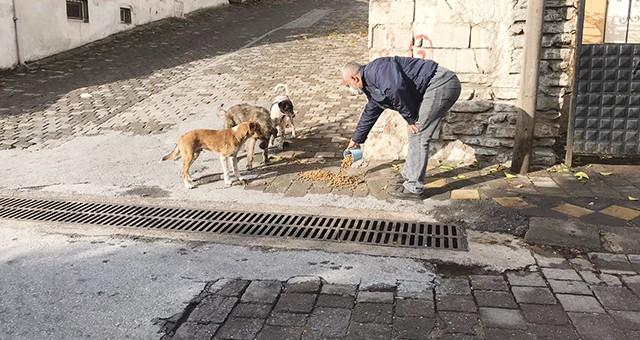 Milas Belediyesi minik dostlarımızın yanında