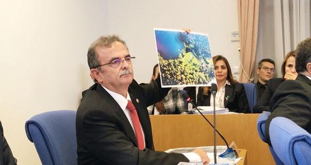 Girgin, Bodrum'da ranta açılan alanı meclise taşıdı: