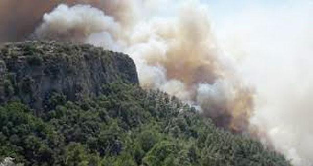 Ormanlık alanlarda ateş yakılmaması genelgesi