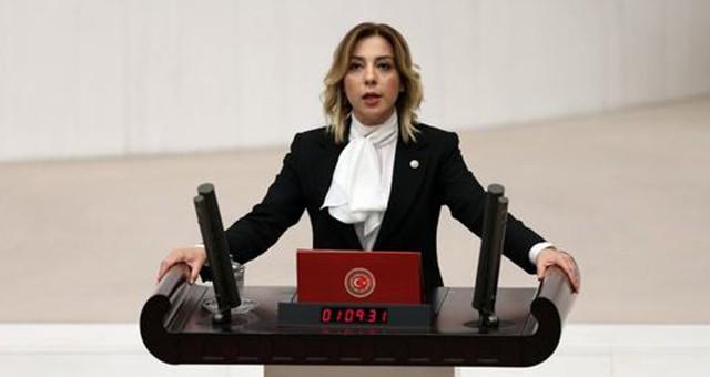 """AKP Muğla Milletvekili Yelda Erol Gökcan: """"Yanan alanların imara açılması söz konusu değildir ve asla da olamaz"""""""
