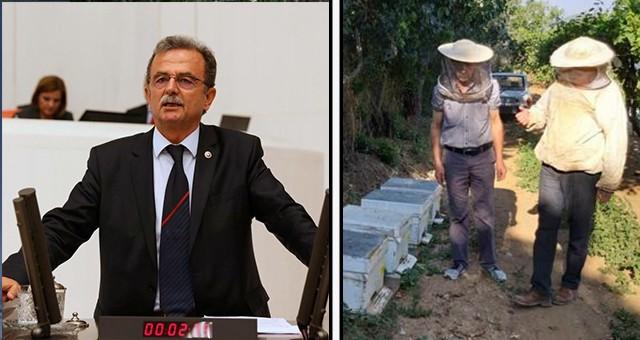 Muğla Milletvekili Süleyman Girgin'den ARI YETİŞTİRİCİLİĞİ VE BAL ÜRETİMİ İÇİN ÖNEMLİ BİR ADIM!