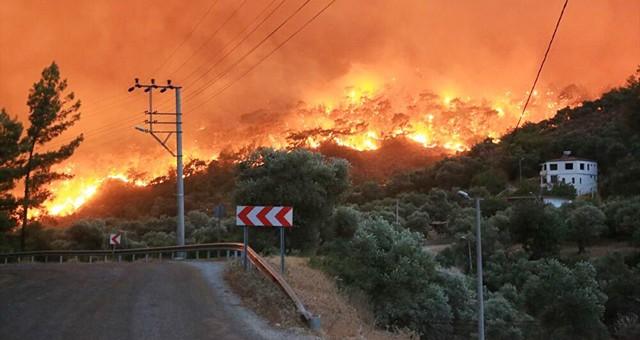 Valilik'ten orman yangınları duyurusu