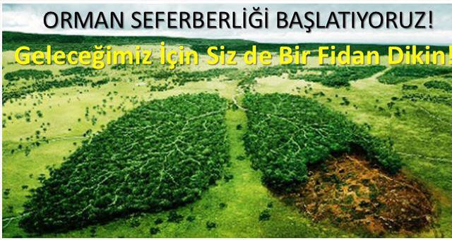 Milli Eğitim'den Güzel Bir Proje  HER ÖĞRENCİ ÜÇ AĞAÇ DİKECEK!..
