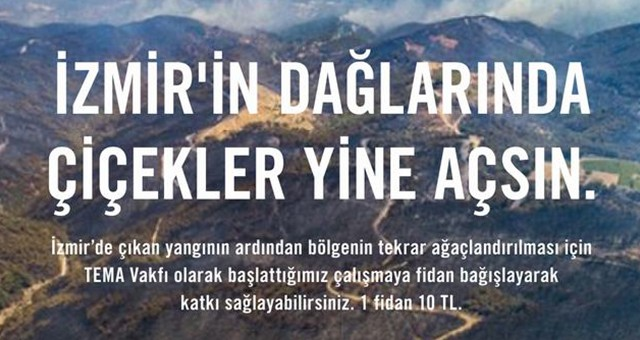 TEMA Vakfı: İzmir için fidan bağışlarınızı bekliyor
