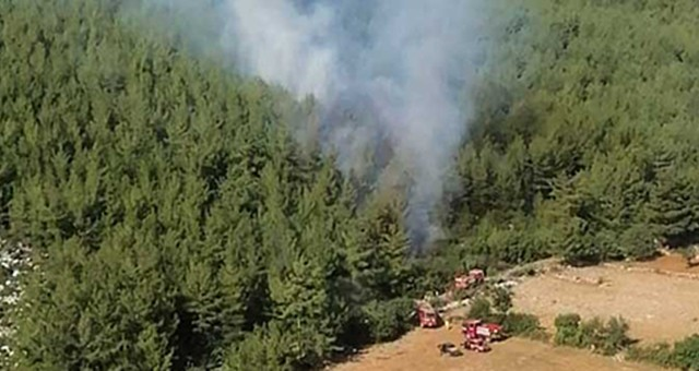 Yine Demirciler'de orman yangını..