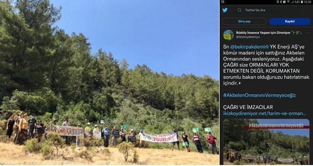 Akbelen Ormanı için Tarım ve Orman Bakanı Bekir Pakdemirli'ye açık mektup yayınlandı..