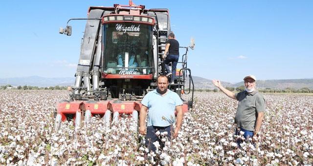 Çiftçi istedi, 2. pamuk hasat makinesi hasada başladı
