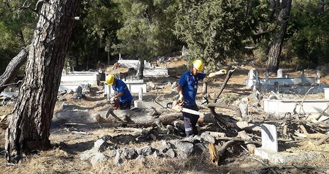 Mezarlıklar Temizleniyor, Odunlar İhtiyaç Sahiplerine Yakacak Oluyor