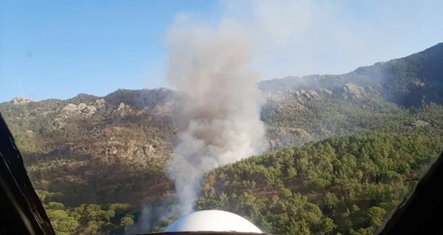 Fıstık çamı ormanında yangın..