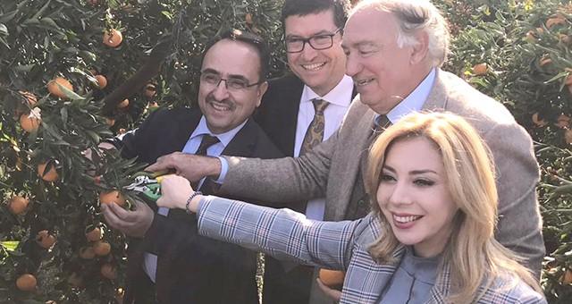 """""""Narenciyecinin zararları Cumhurbaşkanlığı Afet Fonu'ndan karşılanacak.."""""""