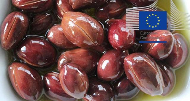 Milas yağlı zeytini de Avrupa Birliği yolunda