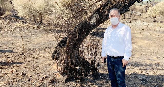 CHP'li Özcan orman yangınlarının peşini bırakmıyor!