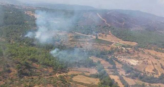 Beyciler'de orman yangını