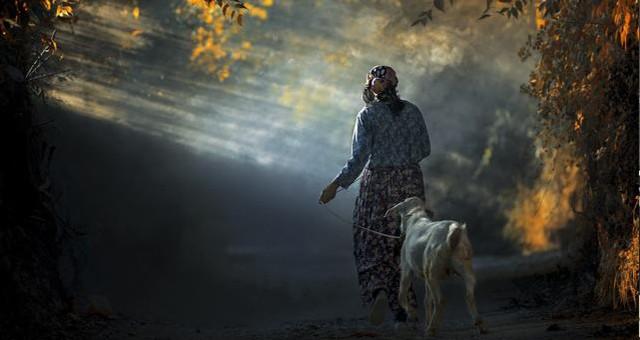 Muğla'da Yaşam'ı Anlatan En İyi Kare belli oldu