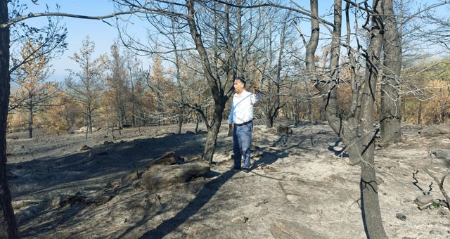 CHP'li Özcan'dan Tarım ve Orman Bakanı'naorman yangınları ile ilgili41 soru