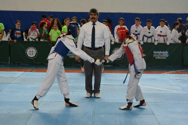 Büyükşehirden Atatürk Kupası Taekwondo Turnuvası