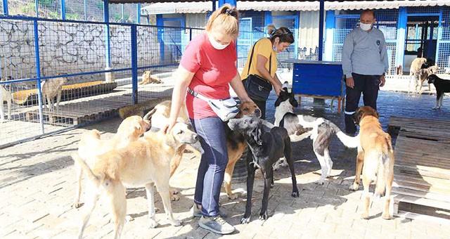 Hayvanları Koruma Günü'nde barınak ziyareti