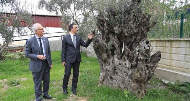 Kaymakam Arslan, Başkan Atıcı'yı ziyaret etti
