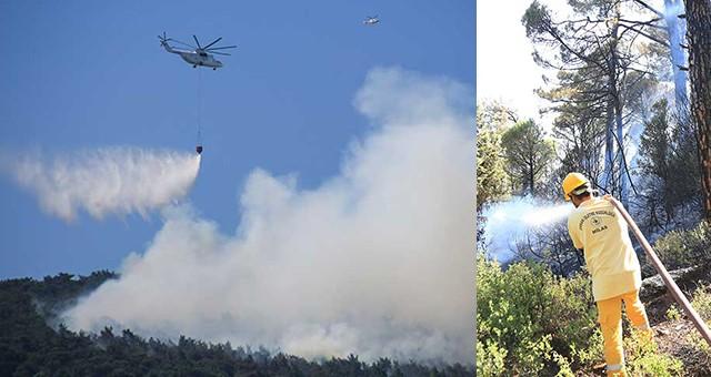 Yine orman yangını!..