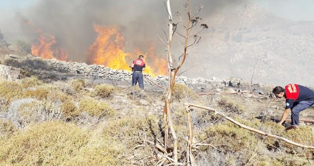 Bayram'da orman yangınları