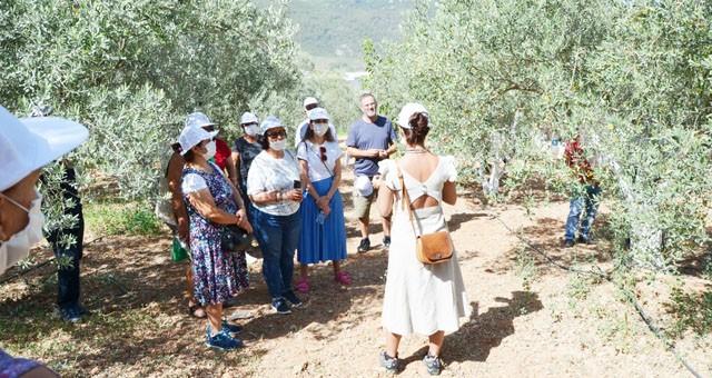 """""""Kentten Köye Zeytin Tarımında Kadının Gücü"""" projesi eğitimlerle devam ediyor"""