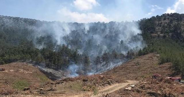 Sezonun ilk orman yangını Kayabaşı Bölgesinde…