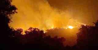 Bu kez Kıyıkışlacık'ta orman yangını..