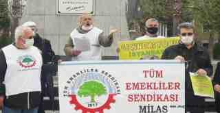 Emeklilerden orman katliamına tepki